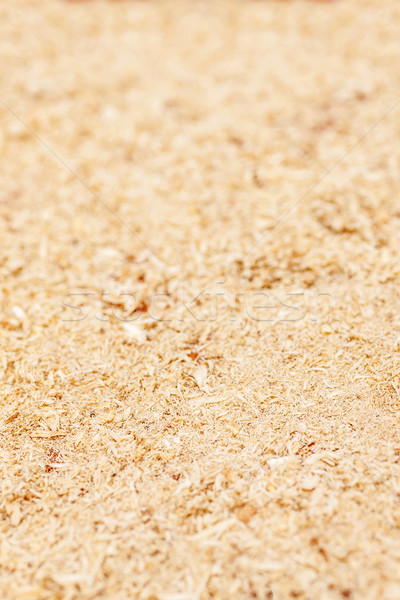wood shavings background Stock photo © sapegina