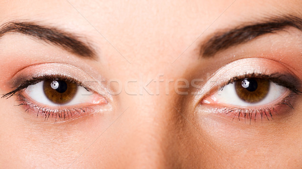 Olhos castanhos belo jovem olhos jovem Foto stock © sapegina
