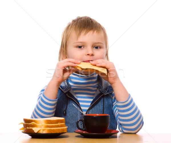 Kız yeme peynir sandviç yalıtılmış beyaz Stok fotoğraf © sapegina