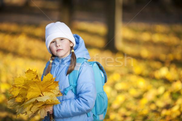 girl holding maple leaves Stock photo © sapegina