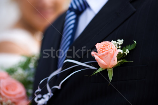 buttonhole with rose Stock photo © sapegina