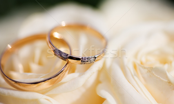 Wedding Rings Stock photo © sapegina