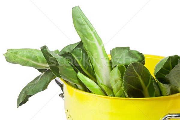 Krab geïsoleerd witte voedsel groene Stockfoto © Saphira