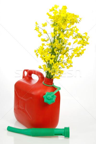 Biodiesel Stock photo © Saphira