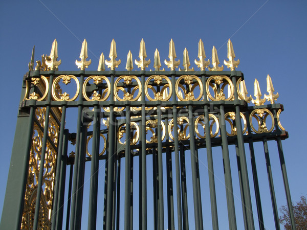 Gold-plated fence Stock photo © Saphira