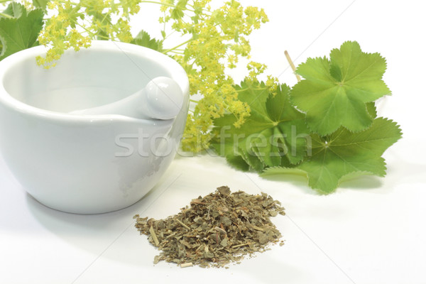 Thee kruidenthee natuur gezondheidszorg kruid genezing Stockfoto © Saphira