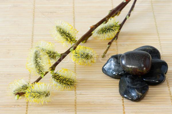 Stenen Geel zwarte bamboe Stockfoto © Saphira
