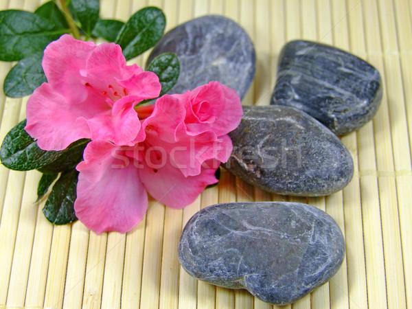 Zen Stock photo © Saphira