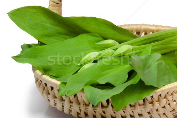 バスケット 新鮮な 白 食品 森林 キッチン ストックフォト © Saphira