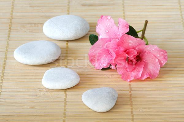 Azalea bloesem roze witte stenen bamboe Stockfoto © Saphira