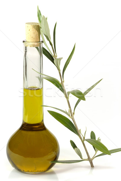 Olive oil with olive branch Stock photo © Saphira
