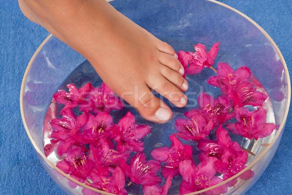 Láb víz tál rózsaszín virágok szépség Stock fotó © Saphira