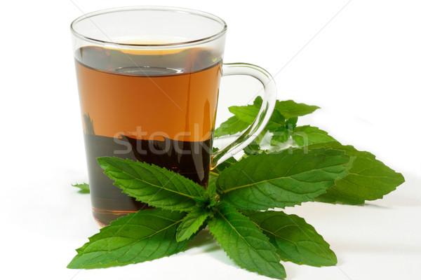 Peppermint tea Stock photo © Saphira