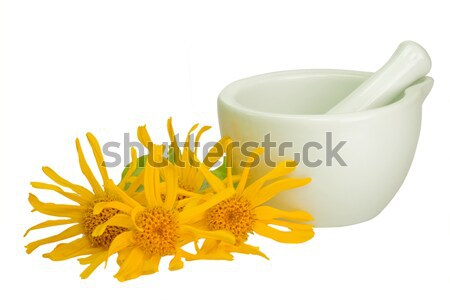 Arnica ointment Stock photo © Saphira