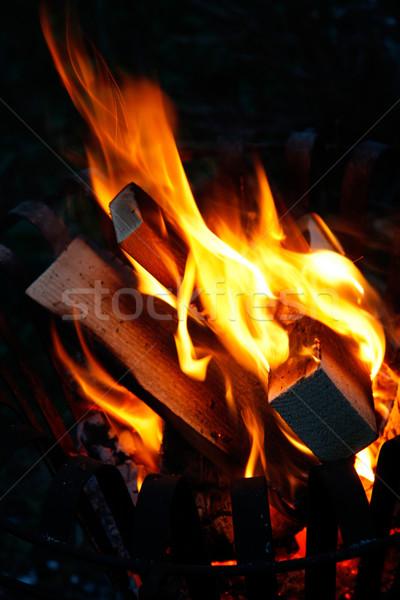 костер сжигание темно свет ночь пламени Сток-фото © Saphira