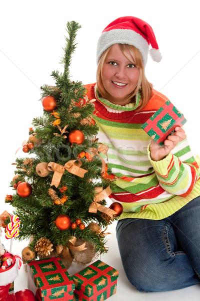 Noel ağacı genç kadın şapka oturma Stok fotoğraf © Saphira