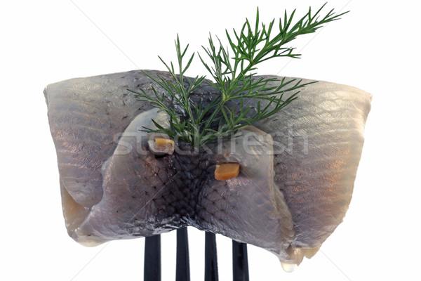 Geïsoleerd witte voedsel vis hoofdpijn voeding Stockfoto © Saphira