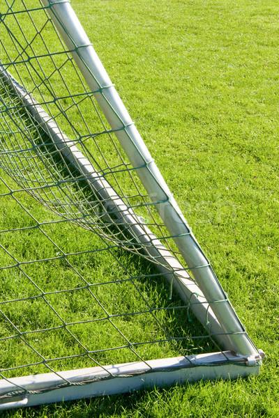 Gol çim futbol net maç Stok fotoğraf © Saphira