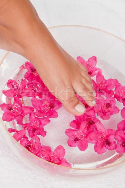 Kadın ayak su pembe güzellik Stok fotoğraf © Saphira
