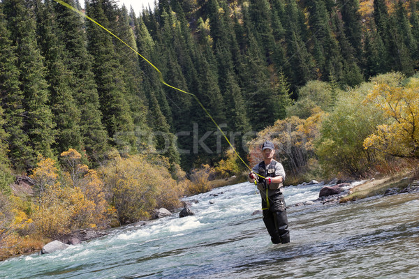 Fisherman fly fishing Stock photo © Saracin