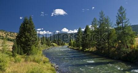 идиллия красивой Панорама горные реке небе Сток-фото © Saracin
