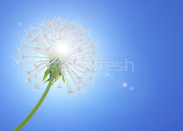Energy Saving dandelion Stock photo © Saracin