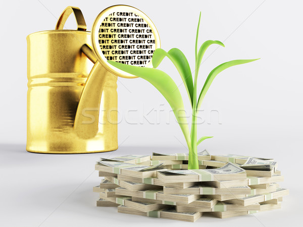 Business lending  Stock photo © Saracin