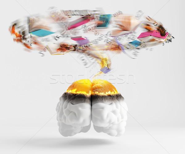 過負荷 訓練 赤 脳 図書 ストックフォト © Saracin