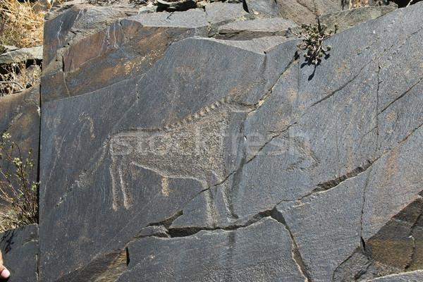 Starożytnych rock obrazy sztuki ludzi konia Zdjęcia stock © Saracin