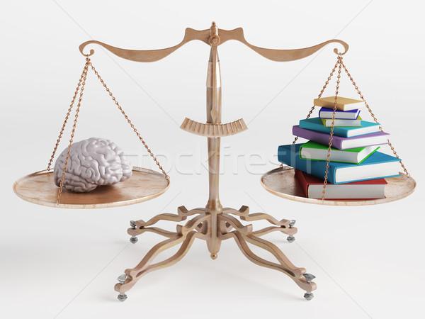 мозг книгах один сторона масштаба другой Сток-фото © Saracin
