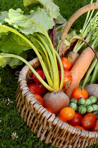 Cesta vegetal jardim raiz de beterraba cenouras Foto stock © sarahdoow