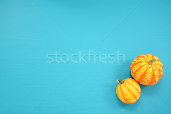 Two striped Festival squash on a teal background Stock photo © sarahdoow
