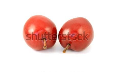 Twee rijp Rood pruimen geïsoleerd witte Stockfoto © sarahdoow