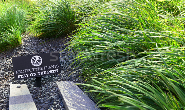 PROTECT THE PLANTS sign in a flower bed  Stock photo © sarahdoow