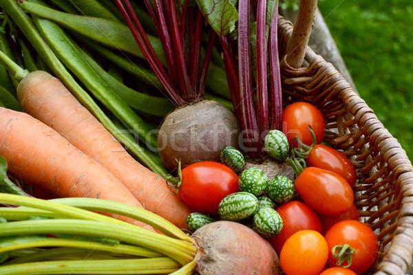 Vers groenten mand wortelen bieten rijp Stockfoto © sarahdoow