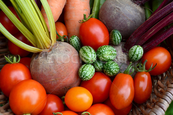 Red tomatoes, rainbow beetroot, pepquino and carrots Stock photo © sarahdoow