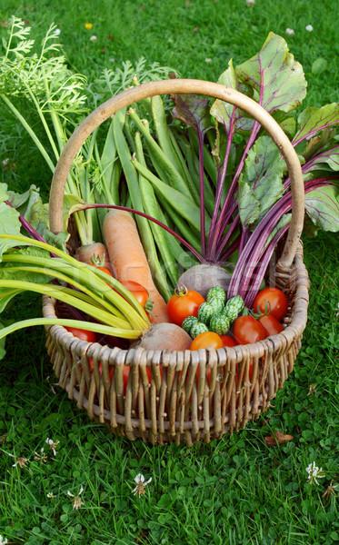 Wiklina koszyka warzyw marchew runner fasola Zdjęcia stock © sarahdoow