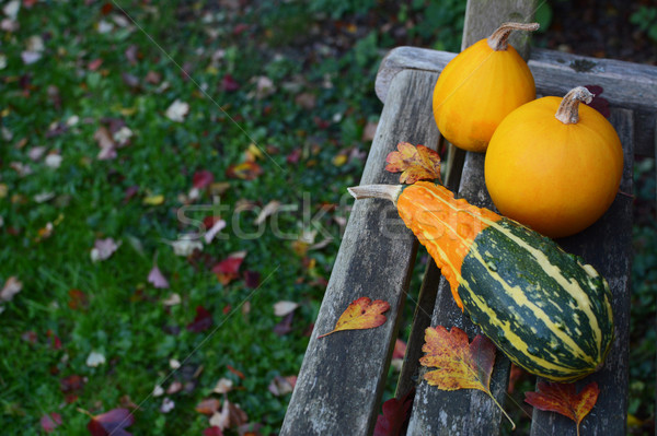 Striped gourd and two yellow ornamental gourds  Stock photo © sarahdoow