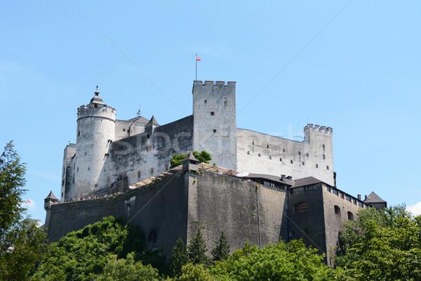 Twierdza Austria banderą pływające niebieski lata Zdjęcia stock © sarahdoow