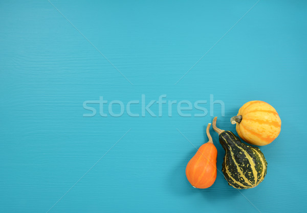 Orange, green and yellow gourds on a teal background Stock photo © sarahdoow