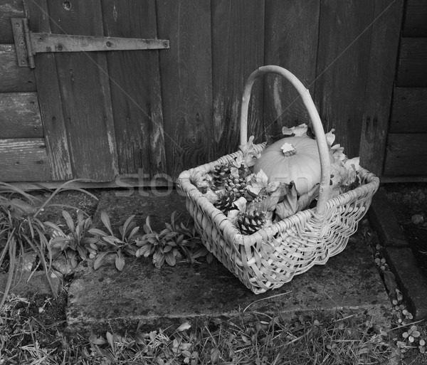 Basket with pumpkin, dry leaves and fir cones on a rustic step Stock photo © sarahdoow