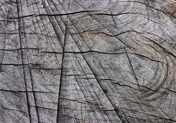 Stockfoto: Verweerde · hout · abstract · textuur · achtergrond · patroon