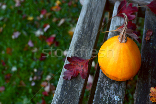 Smooth pear bicolour ornamental gourd on a wooden bench Stock photo © sarahdoow