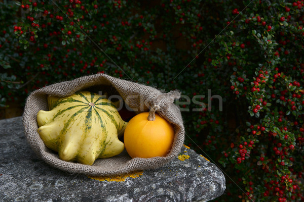 Sack with Crown of Thorns and orange gourds on bench Stock photo © sarahdoow