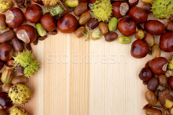 Border of natural fall material - acorns, horse chestnuts, beech Stock photo © sarahdoow