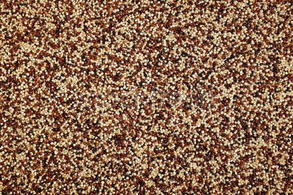 Mixed red, white and black quinoa background  Stock photo © sarahdoow