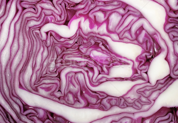 Cross section of red cabbage background Stock photo © sarahdoow
