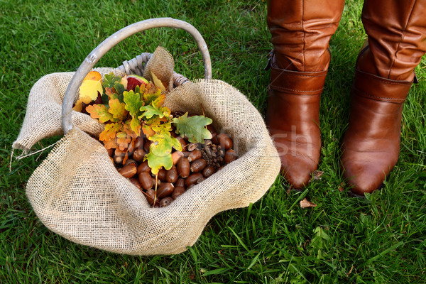 Basket of acorns and oak leaves next to brown boots Stock photo © sarahdoow