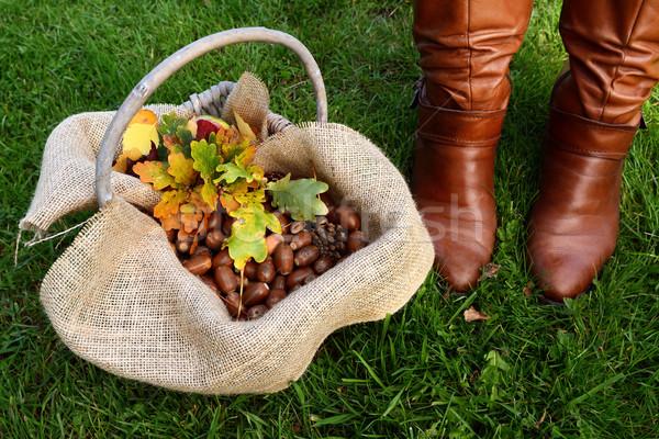 Koszyka dąb pozostawia brązowy buty pełny Zdjęcia stock © sarahdoow