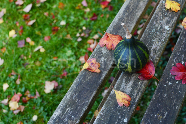 Green spinning gourd on a weathered wooden bench Stock photo © sarahdoow